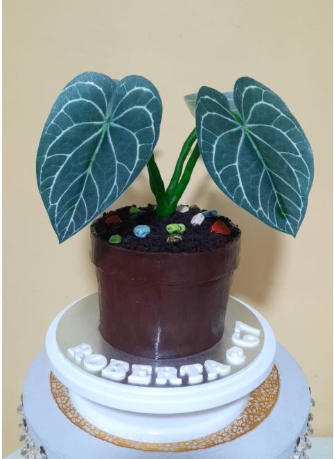 Edible Anthurium Cake